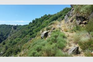 Sentier longeant la roche