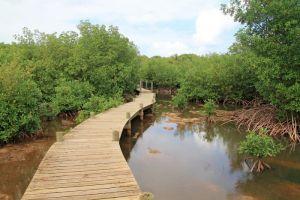 Une randonnée très peu fréquentée dans le marais de Port-Louis