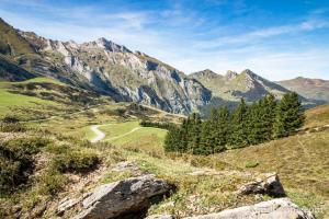 Point de vue sur la route qui va à Aubisque