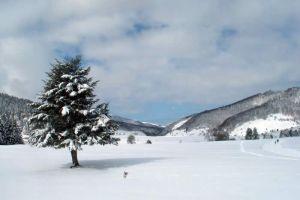 Randonnée en raquettes à neige à Payolle