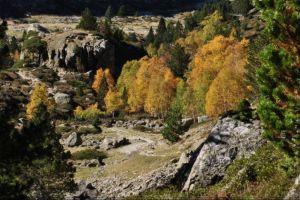 En descendant la vallée du Bastan