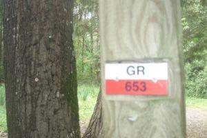 Chemins de Saint-Jacques-de-Compostelle GR 653