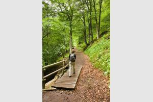 Randonnée autour du lac Pavin