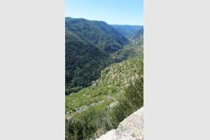 Gorges du Tarn depuis le belvédère
