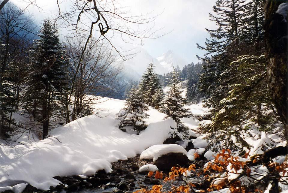 Plateau du Marcadau en hiver