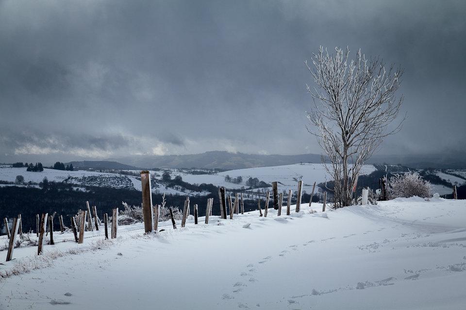 Randonnée raquettes : Balade dans la neige entre Aveyron et Lozère
