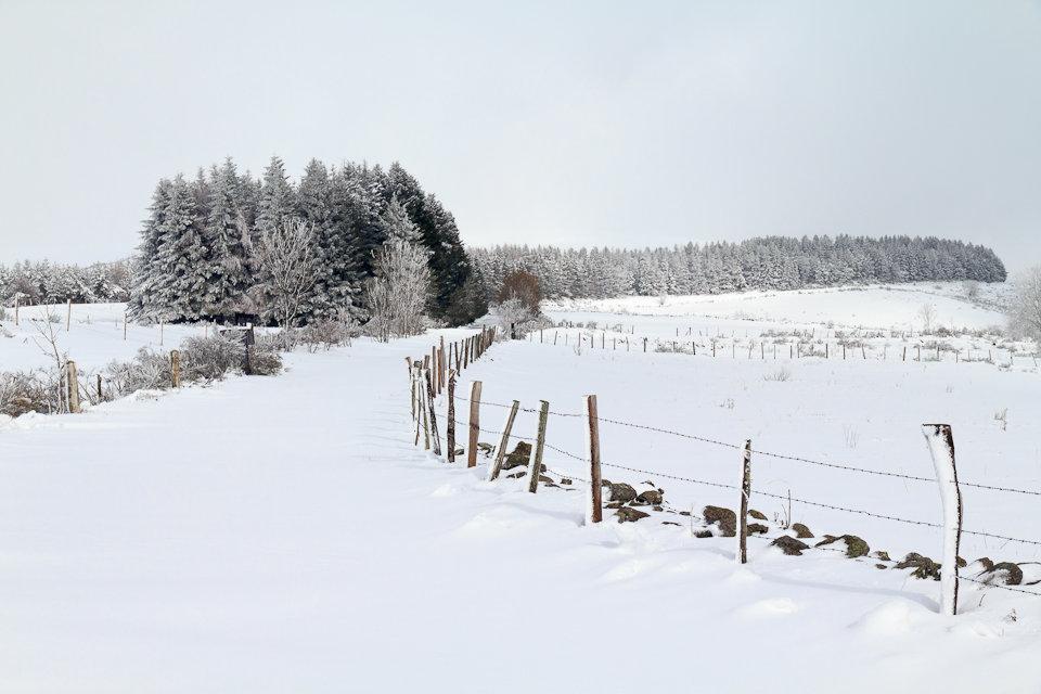 Balade dans la neige en Aveyron - 1