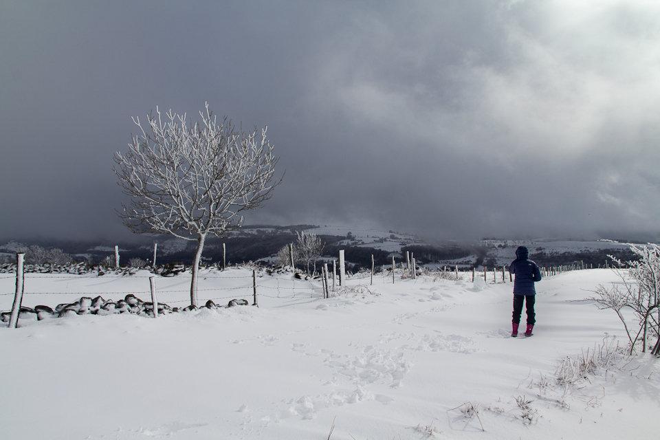 Balade dans la neige en Aveyron - 2
