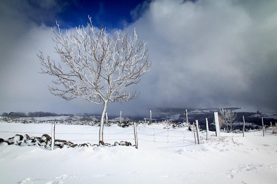 Balade dans la neige en Aveyron - 3