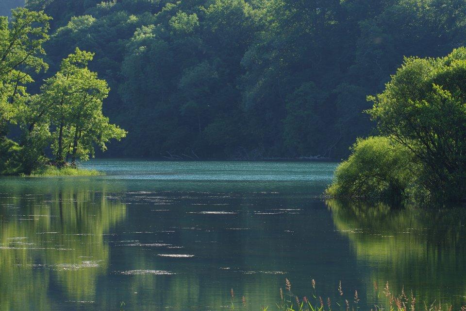 Lac de Castet un matin de printemps