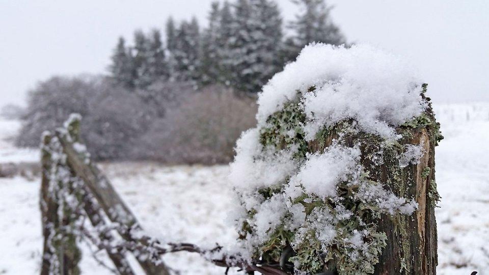 La neige est légère...comme du duvet !