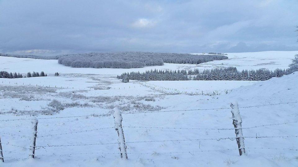 À la lisière des bois, vaste vue sur le plateau