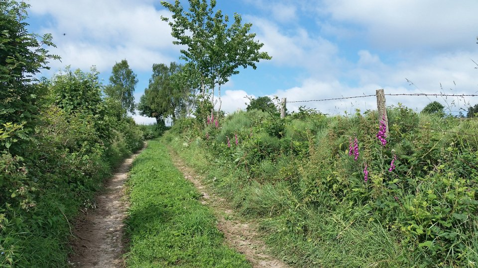 Chemin qui monte après Deux Verges