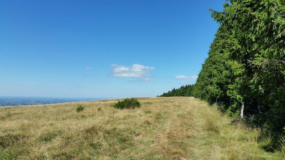 On longe la forêt avec vue sur la vallée