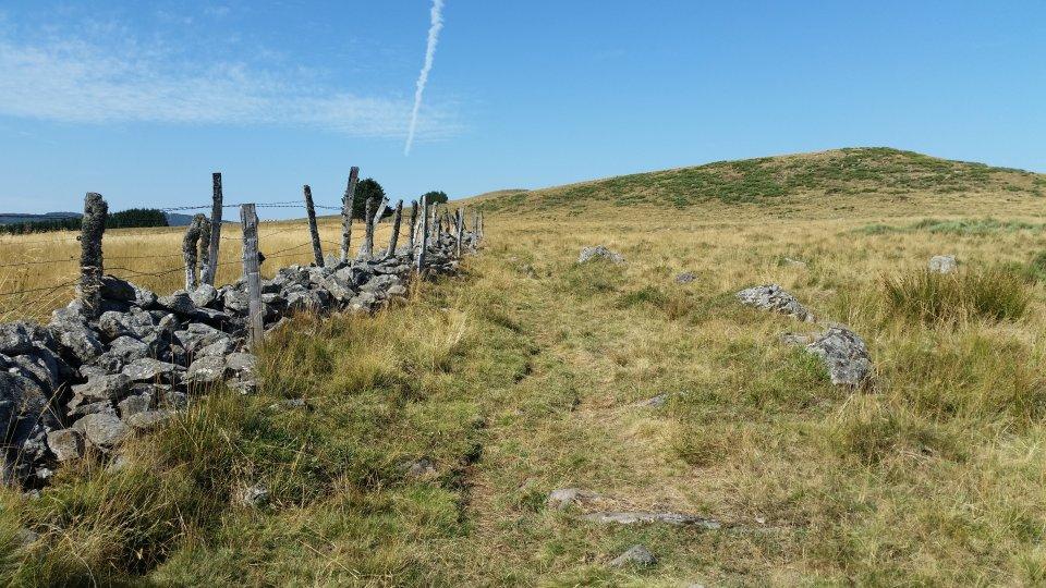 Entre les champs et les clotures