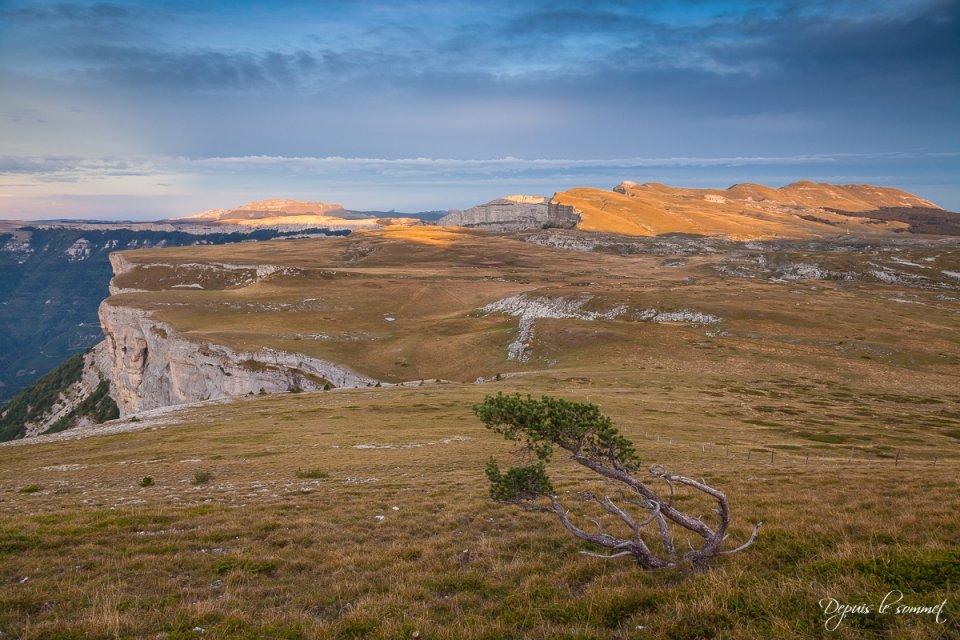Plateau de Font d'Urle depuis le Puy de la Gagère
