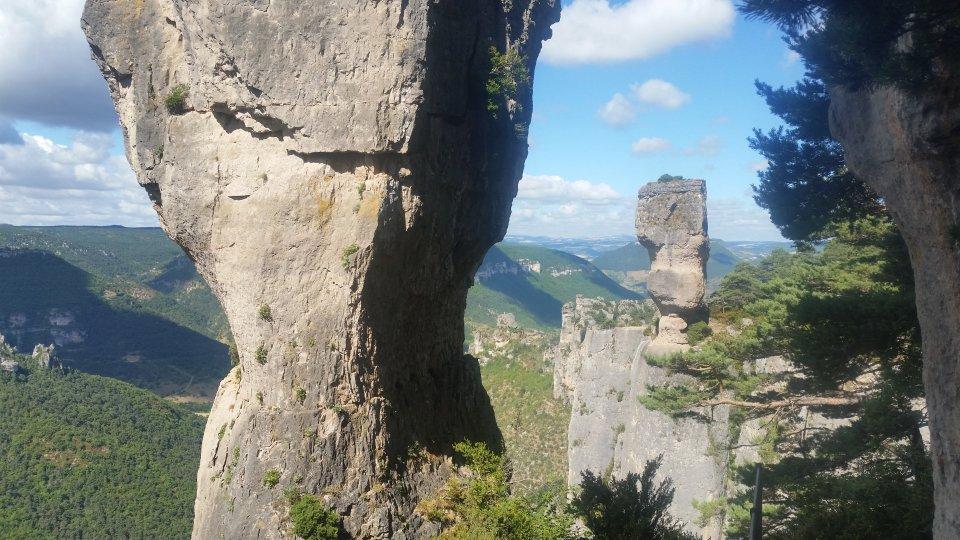 Randonnée pédestre : Randonnée sur les corniches de la Jonte et du Tarn