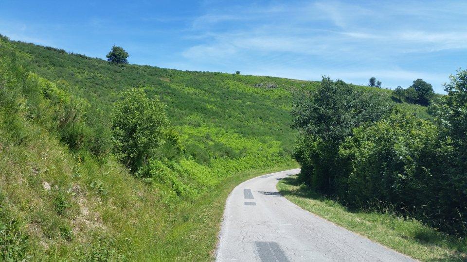 Un petit passage sur une route peu passante