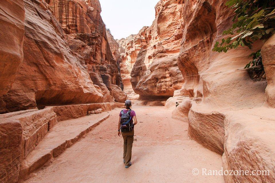 Randonnée dans le canyon de Pétra en Jordanie