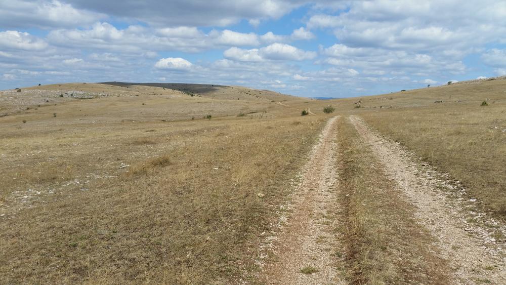 Le chemin qui amène au Mont Gargo