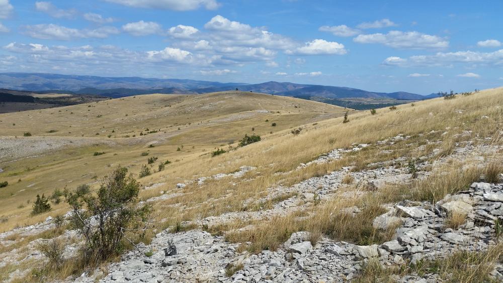 Sur la montée au Mont Gargo