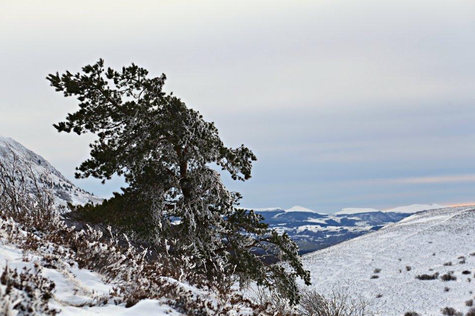 Puy du Pariou