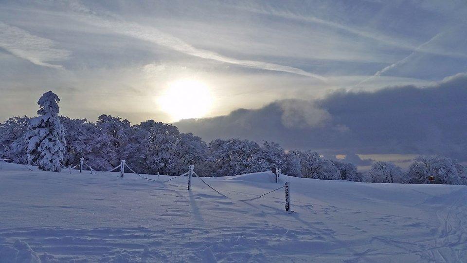 Soleil matinal sur la neige fraiche