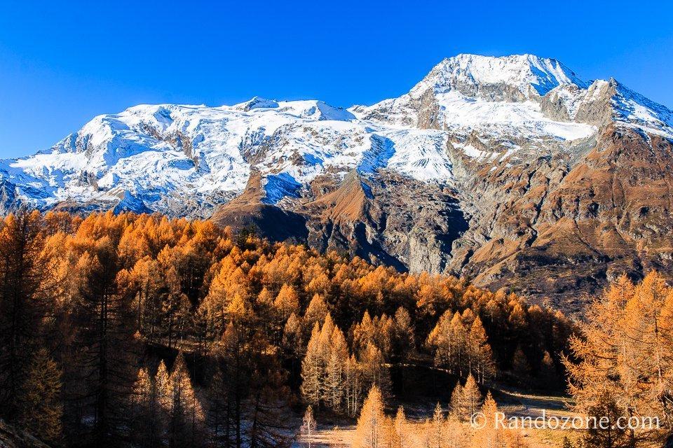 Belle vue sur le Mont Pourri et les mélèzes