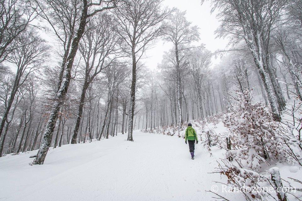 Progressions dans la neige le long de la piste