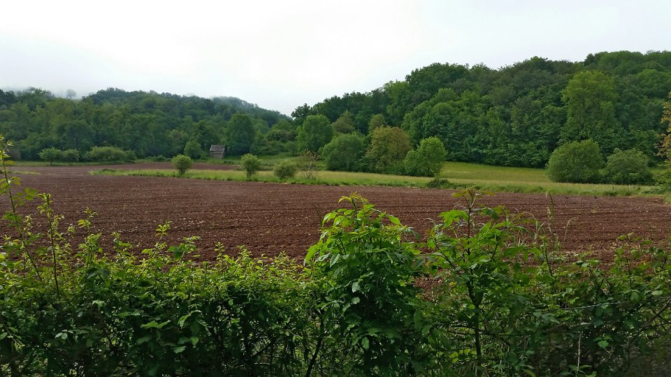 Dans la campagne environnante