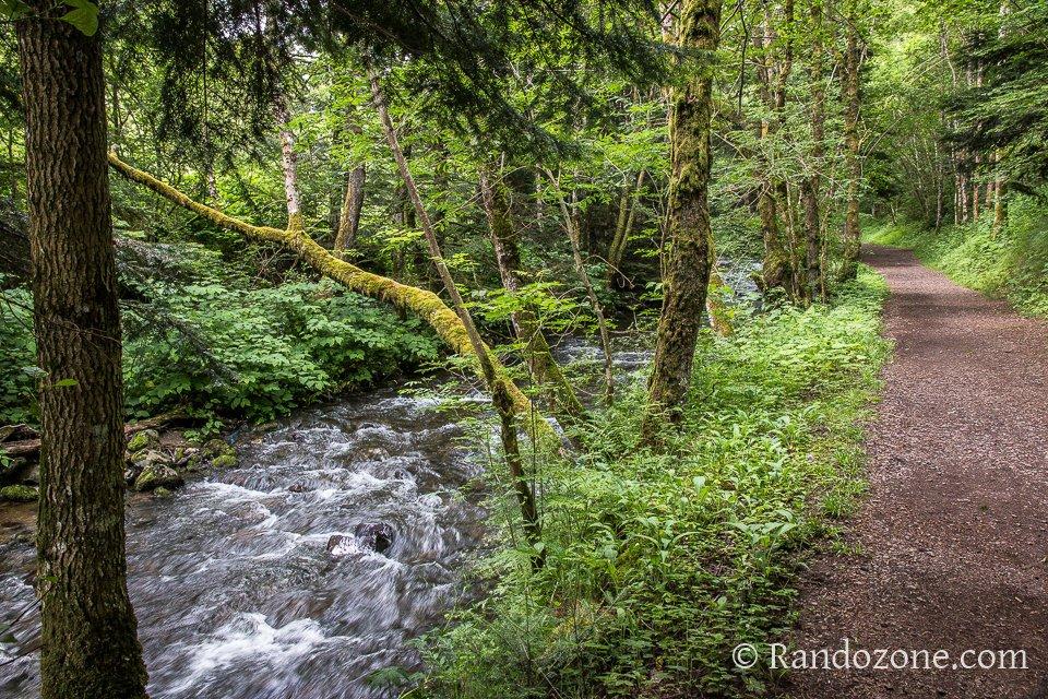 Sources de la Dordogne : cours d'eau et sentier