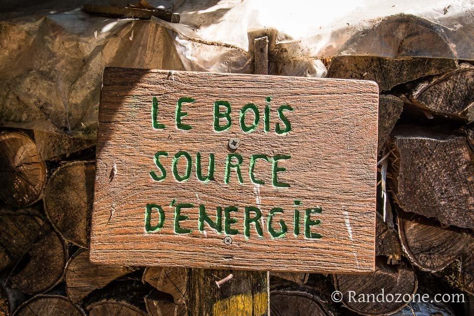 Le bois source d'énergie