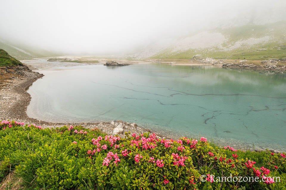Randonnée pédestre : Randonnée pour faire le tour du lac d'Ossoue