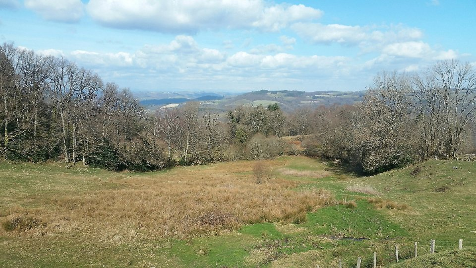 La vue porte jusqu'au Plomb du Cantal
