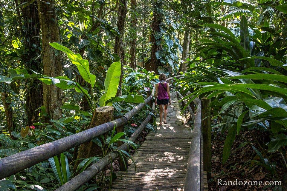 Balade : Visiter le Parc Zoologique des Mamelles