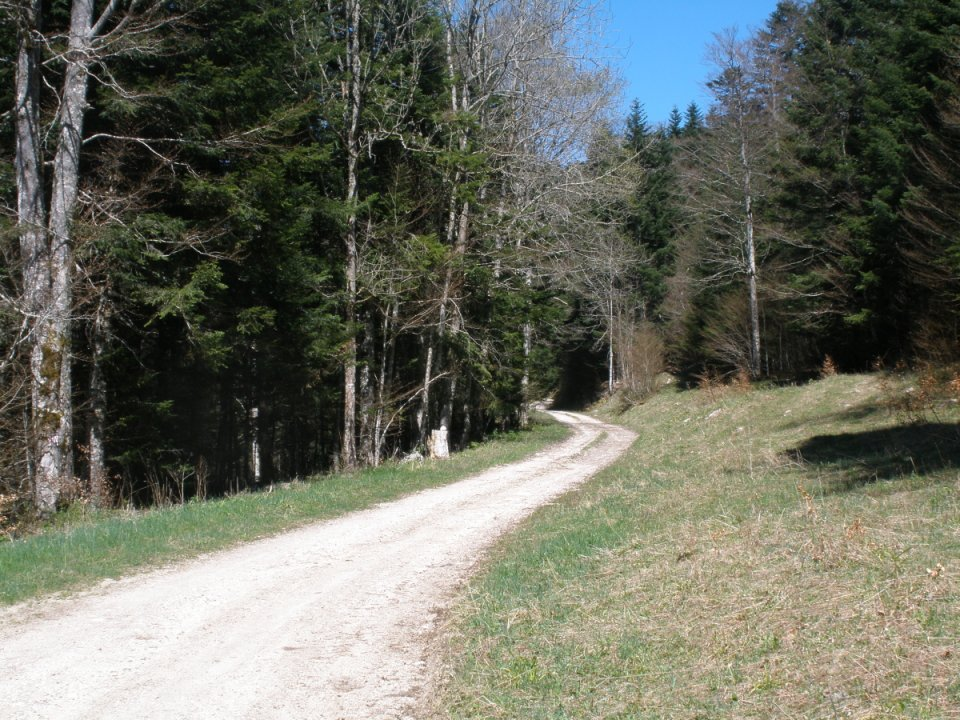 Combe Laval