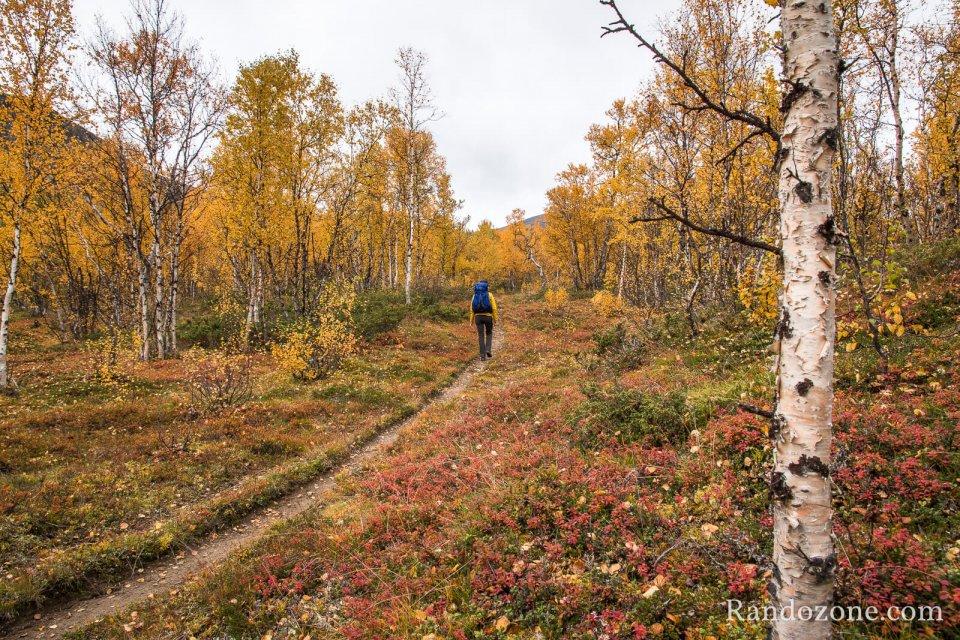 Sur le sentier depuis Nikkaluokta