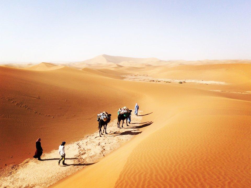 Trekking : Voyage et trek dans le désert Marocain