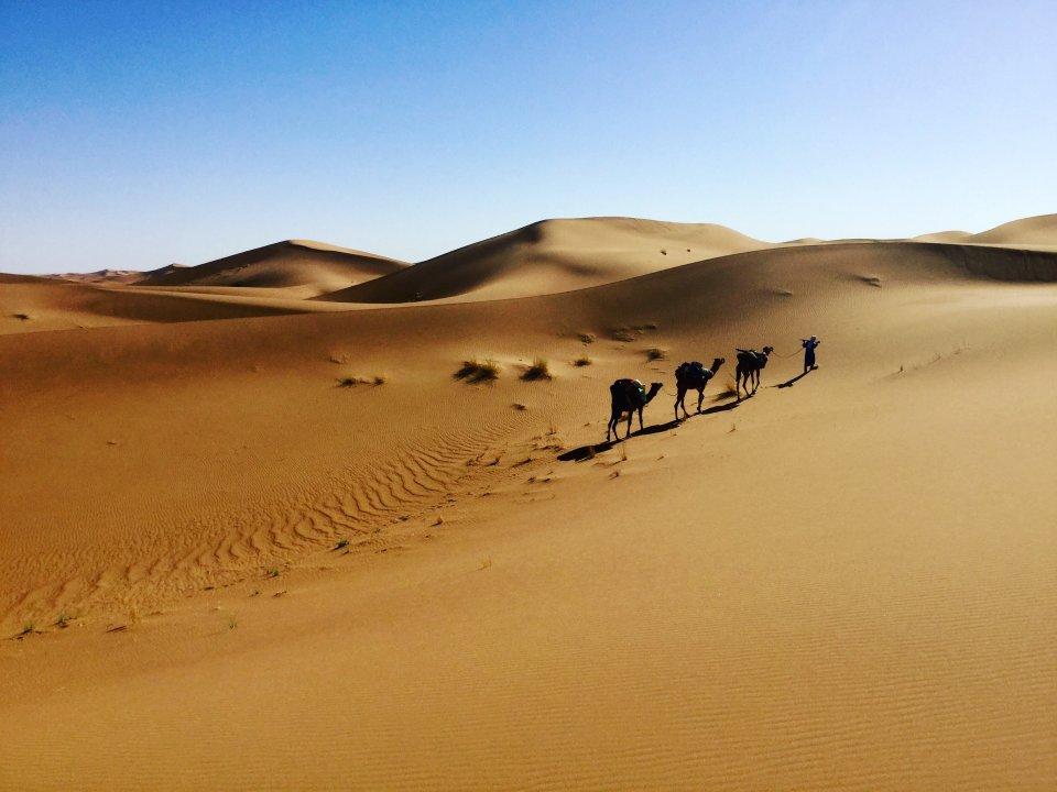 Outdoor : La caravane du désert