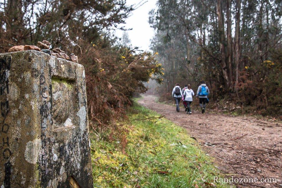 Sur la dernière étape du chemin de Saint Jacques de Compostelle