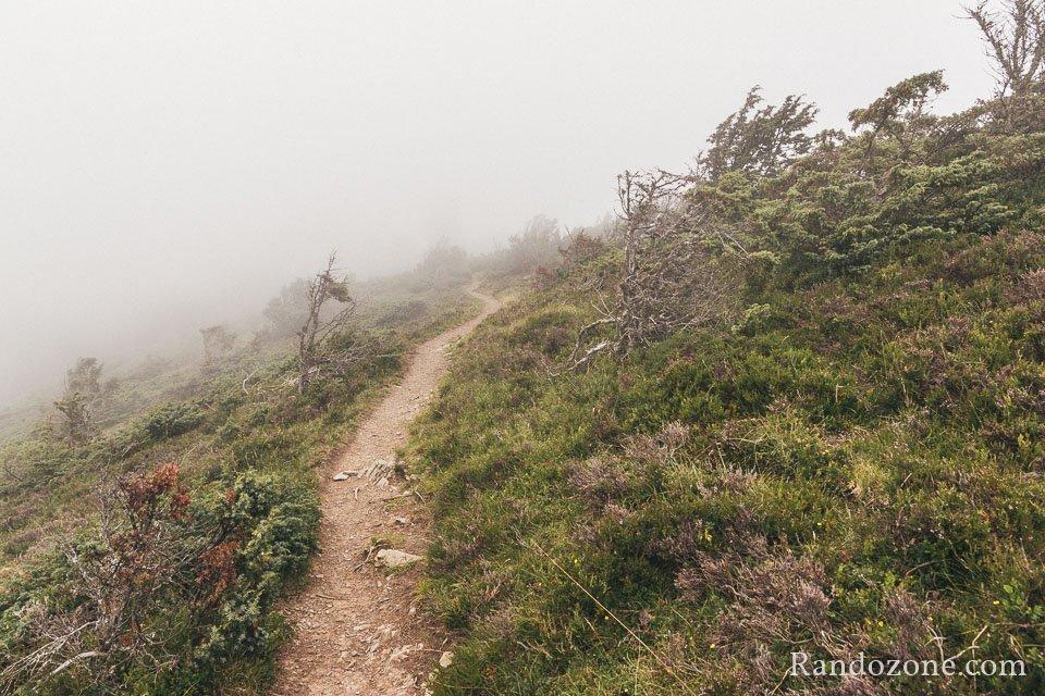 Sentier très esthétique dans le brouillad