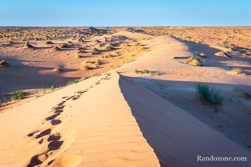Du sable aussi loin que porte le regard